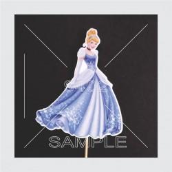 Princeze N62 Pepeljuga