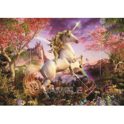Picture Unicorn, Various 104