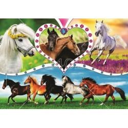 Konji Životinje 025