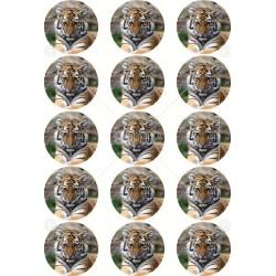 JS 086 Životinje (4) Tigar