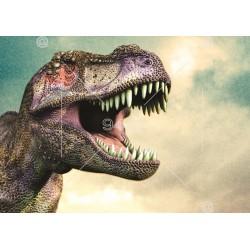 Picture Dinosaurus 005