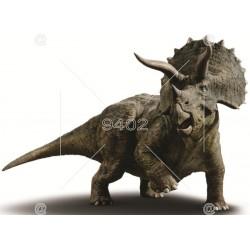 Picture Dinosaurus 017