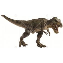 Picture Dinosaurus 019